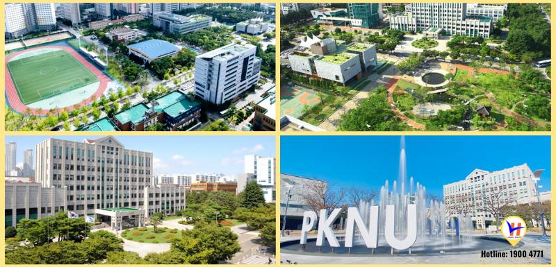 Trường đại học Quốc gia Pukyong - Top 3 đại học tốt nhất Busan