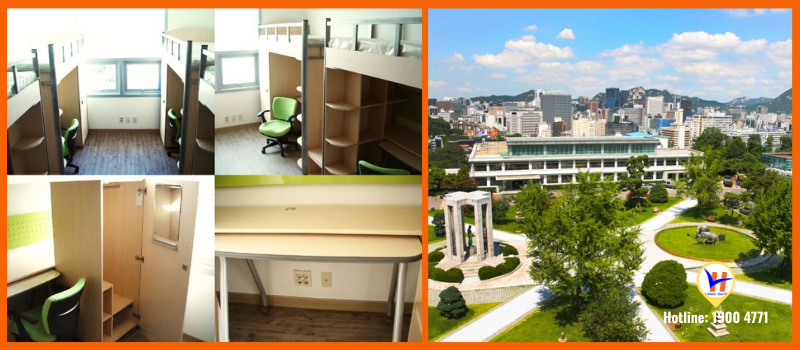Trường Đại học Hannam - Top 3 đại học tốt nhất khu vực Daejeon