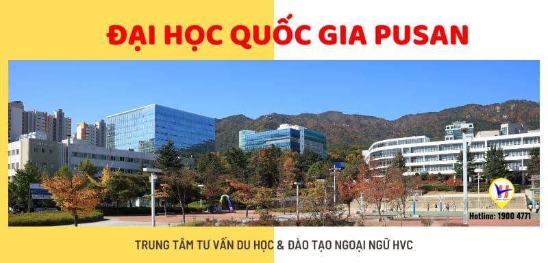 Đại học Quốc gia Pusan Hàn Quốc - Du học HVC